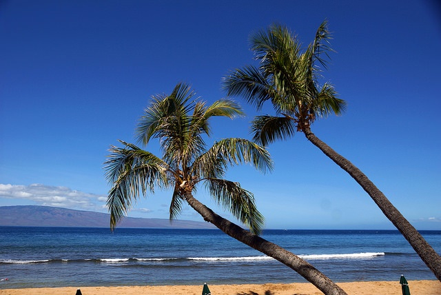 How to Have a Luxury Experience Visiting Maui
